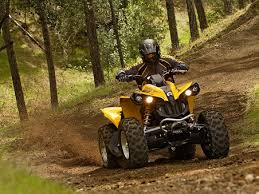 Yellow ATV riding through tall trees