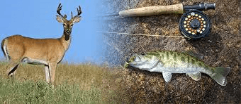 deer, trout and fishing pole on brown grass with blue sky behind